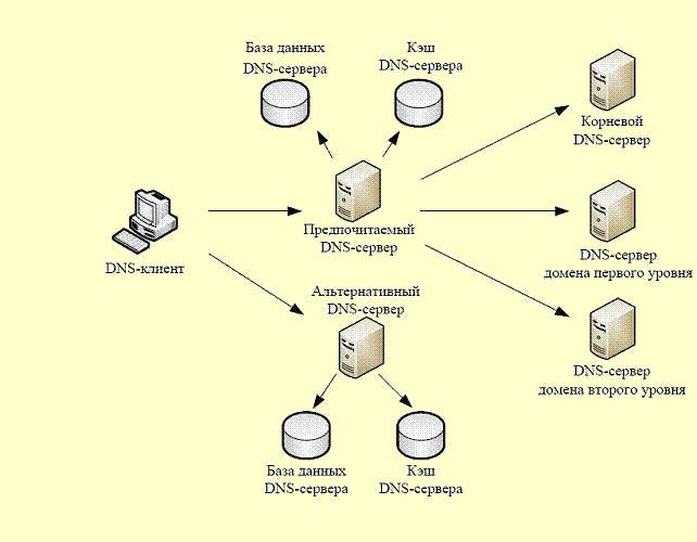 DNS служба доменных имен